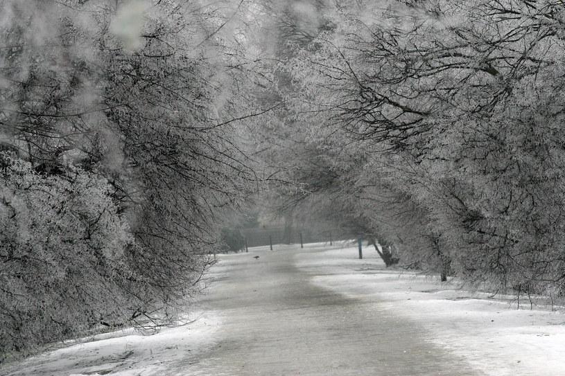 Zima, zdj,. ilustracyjne /FOT. PIOTR KRZYZANOWSKI/POLSKA PRESS GRUPA /East News