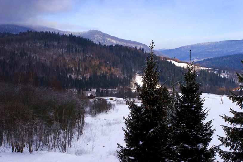 Zimowe Bieszczady /Bartek Wardziak /123RF/PICSEL