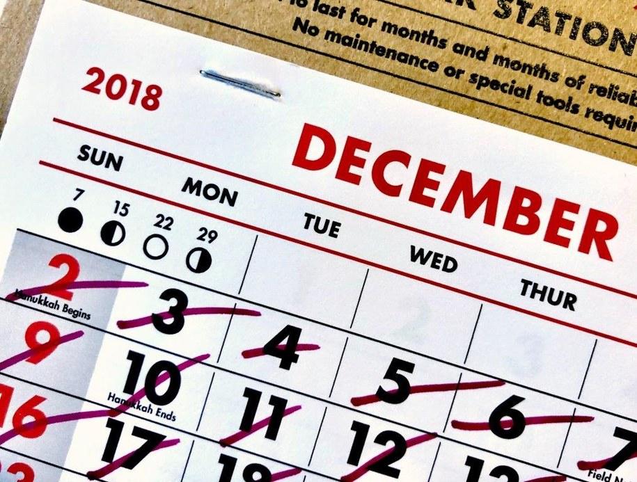 Zimowy kalendarz dla alergików /Materiały prasowe