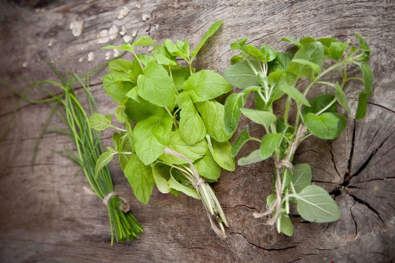 Zioła zawierają wiele składników biologicznie czynnych. Warto zastąpić nimi sól w codziennym przygotowaniu potraw /123RF/PICSEL