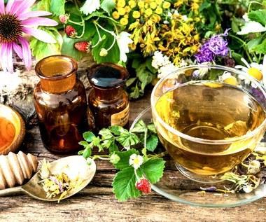 Ziołowe herbatki odchudzające
