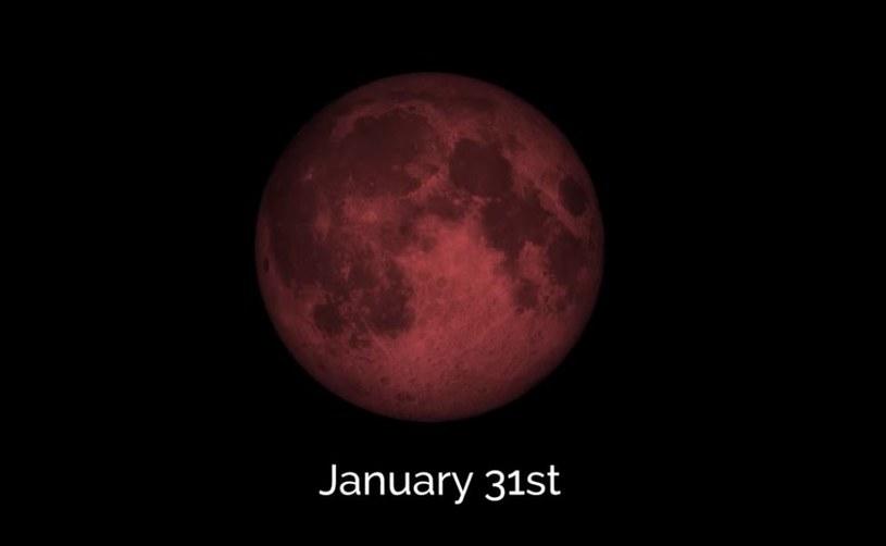 Zjawisko będzie widoczne w Polsce  tuż przed świtem 31 stycznia /NASA