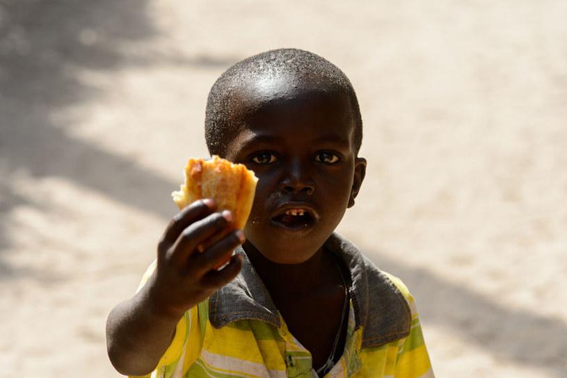 Zjawisko nagminnego marnowania żywności występuje coraz częściej, tymczasem niektóre dzieci głodują /123RF/PICSEL