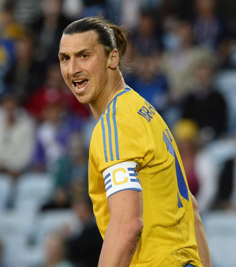 Zlatan Ibrahimović, gwiazda reprezentacji Szwecji /AFP