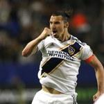 Zlatan Ibrahimović może zostać piłkarzem Bologny