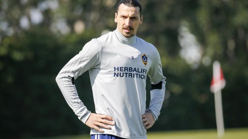 Zlatan Ibrahimović na 1. treningu w LA Galaxy. /PA Sport