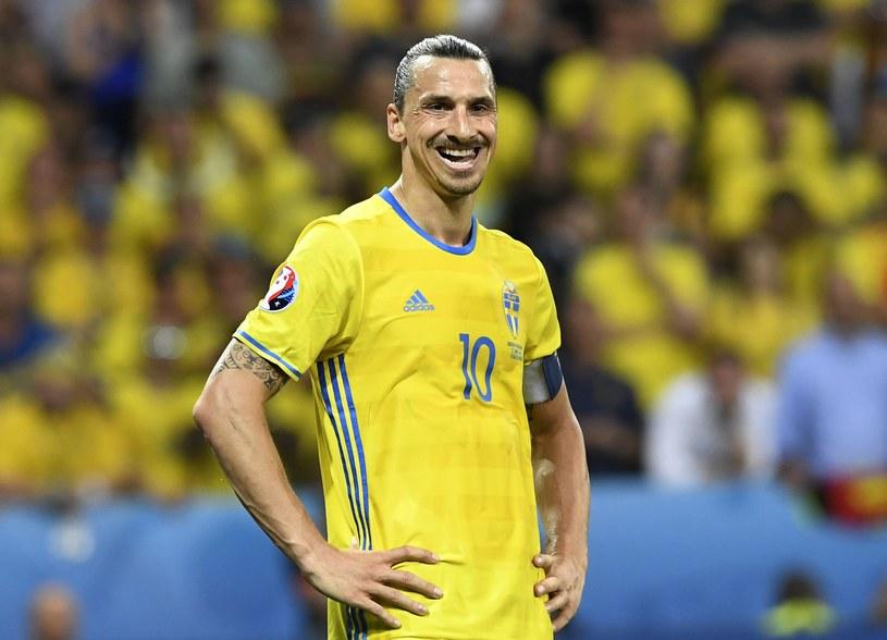 Zlatan Ibrahimović w barwach reprezentacji Szwecji /AFP