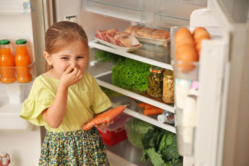 Źle przechowywana żywność szybciej się psuje /123RF/PICSEL