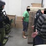 Zlikwidowano fabrykę papierosów na Mazowszu. 7 osób aresztowanych