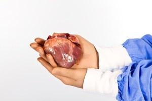 Złote nanowłókna odbudują serce po zawale