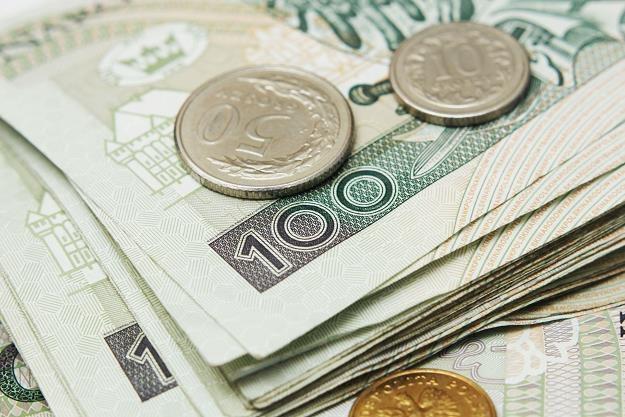 Złoty będzie kontynuował ruch w kierunku wsparcia na 3,93/euro /©123RF/PICSEL