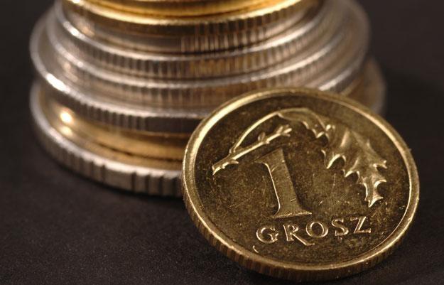 Złoty będzie reagować na zachowanie EUR-USD /© Bauer