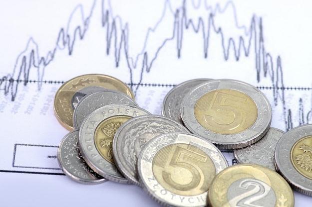 Złoty i obligacje umocniły się na otwarciu /© Panthermedia