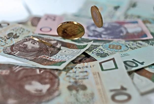 Złoty i waluty CEE uniknęły wyprzedaży, fot. Danuta Matloch /Reporter