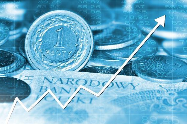 Złoty jest mocniejszy w ślad za euro /©123RF/PICSEL