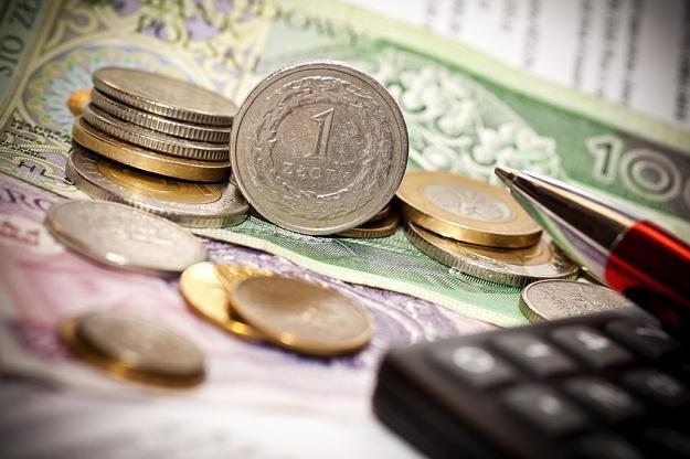 Złoty jest nadal ulubieńcem spekulantów /© Panthermedia