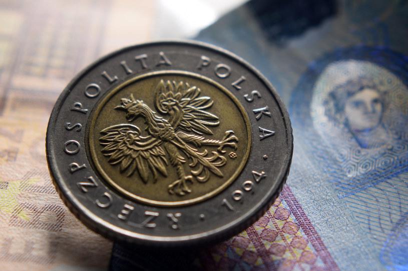 Złoty jest najsłabszy do euro od kwietnia /123RF/PICSEL