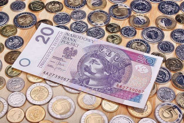 Złoty jest niedowartościowany do euro /©123RF/PICSEL