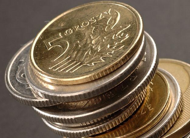 Złoty może osłabić się do poziomu 4,45/EUR /© Bauer