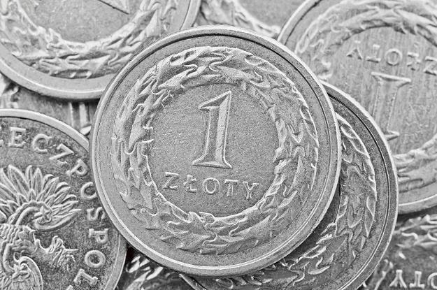 Złoty może się umocnić, jeżeli dane z USA zaskoczą negatywnie /©123RF/PICSEL