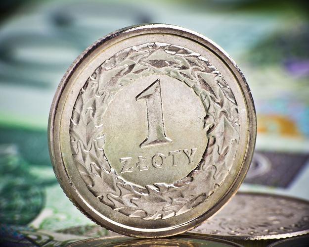 Złoty nadal pozostaje pod presją cięcia stóp procentowych /©123RF/PICSEL