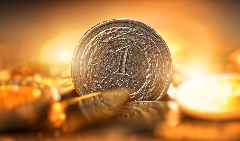 Złoty najsłabszą walutą w regionie. Co dalej? /123RF/PICSEL