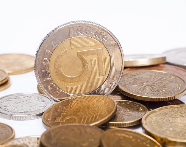 Złoty osłabił się w czwartek po niższym od oczekiwań odczycie wskaźnika CPI /©123RF/PICSEL