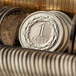 Złoty pod presją. Co dalej z polską walutą?