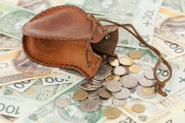 Złoty pozostanie w paśmie 4,18-4,22 za euro /©123RF/PICSEL