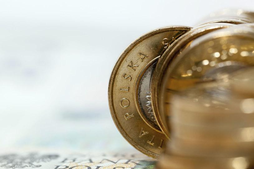 Złoty się umocni? To możliwe /123RF/PICSEL