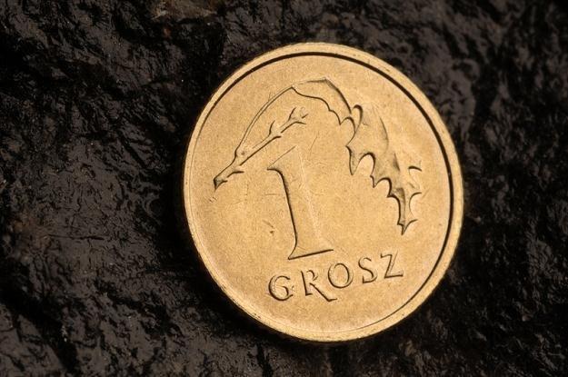Złoty stabilny, czeka na dane z Niemiec /© Panthermedia