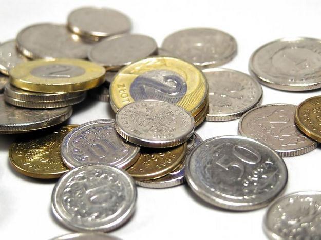 Złoty stabilny, dane GUS o produkcji bez większego wpływu /©123RF/PICSEL