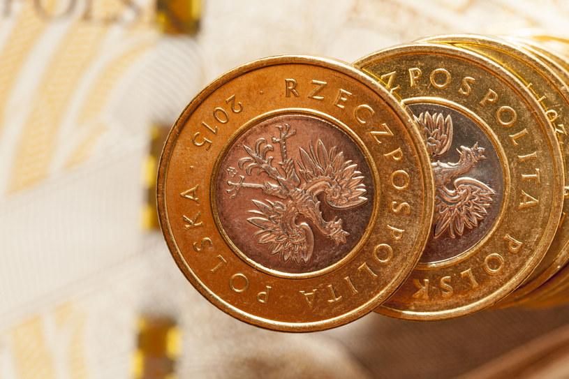 Złoty traci od kilku dni, ale prognozy nie są złe dla naszej waluty /123RF/PICSEL