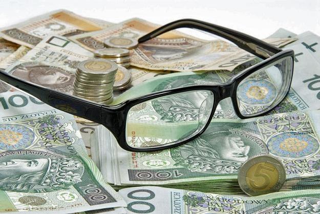 Złoty umocnił się dzisiaj do głównych walut. Fot. Marek Jaśkiewicz /Agencja SE/East News