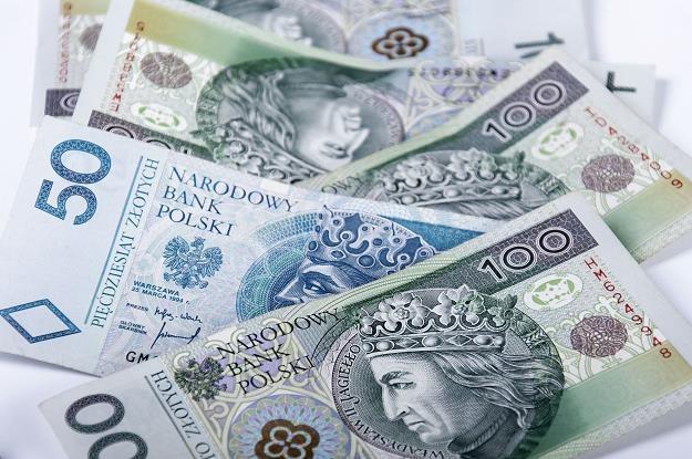 Złoty w czwartek umacniał się do dolara i euro /©123RF/PICSEL