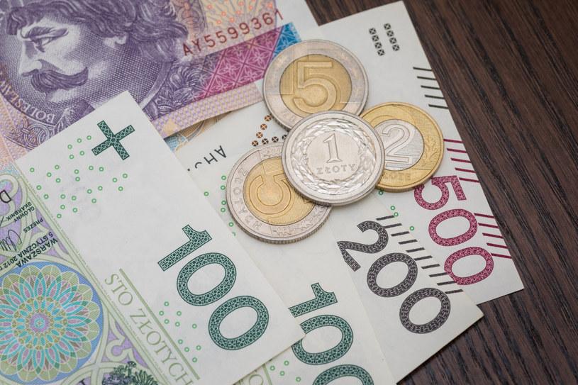 Złoty w nadchodzący roku straci na wartości , fot. Arkadiusz Ziółek /Agencja SE/East News