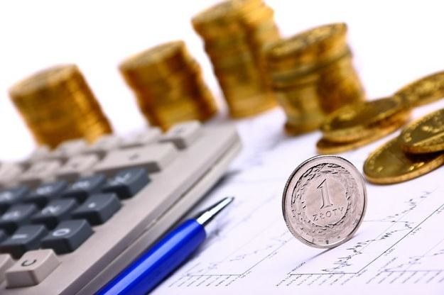 Złoty w najbliższych dniach może oscylować wokół poziomu 4,15 za euro /©123RF/PICSEL