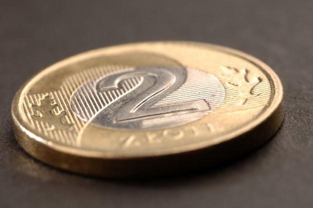 Złoty w przyszłym tygodniu może zyskiwać /© Bauer