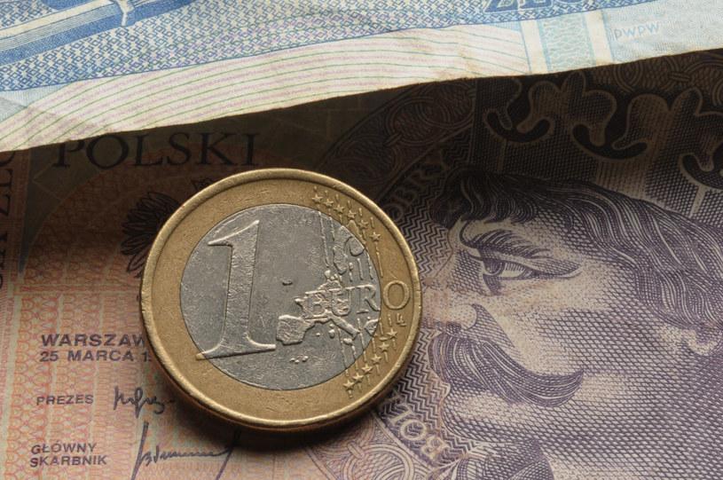 Złoty wciąż traci do euro /123RF/PICSEL