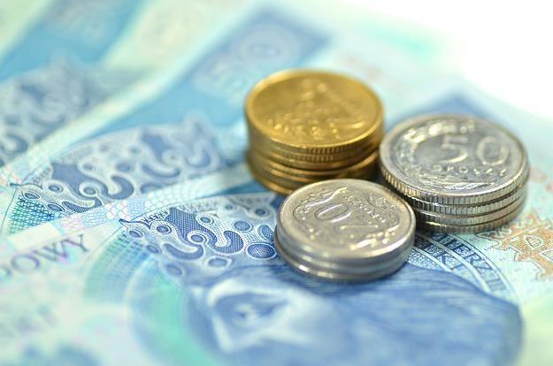 Złoty we wtorek przed południem był szczególnie mocny wobec najważniejszych walut /©123RF/PICSEL