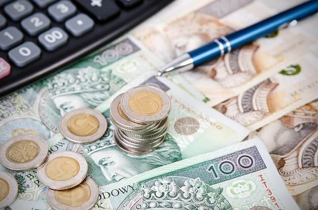 Złoty wzmocniony, a dolar czeka na payrollsy... /©123RF/PICSEL