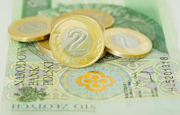 Złoty zyskał wobec głównych walut /©123RF/PICSEL