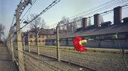 Zmarł Zygmunt Sobolewski, więzień pierwszego transportu Polaków do KL Auschwitz