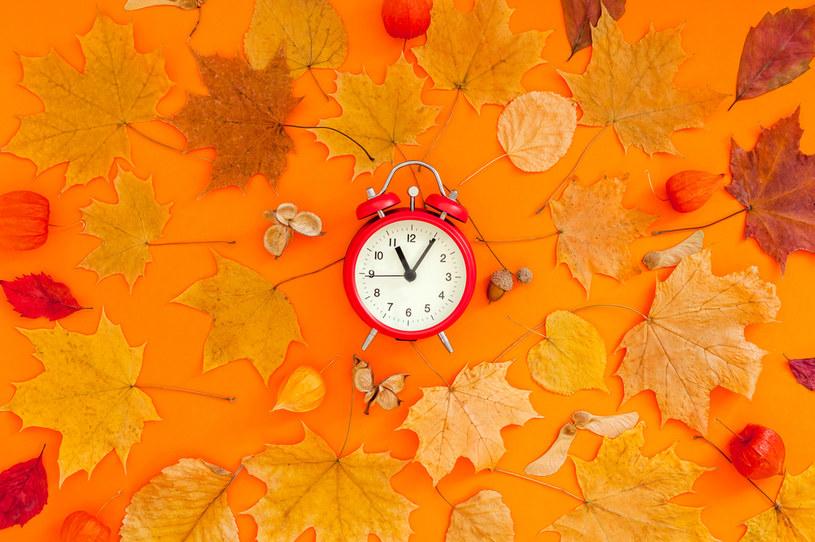Zmiana czasu na zimowy nastąpi w październiku /123RF/PICSEL