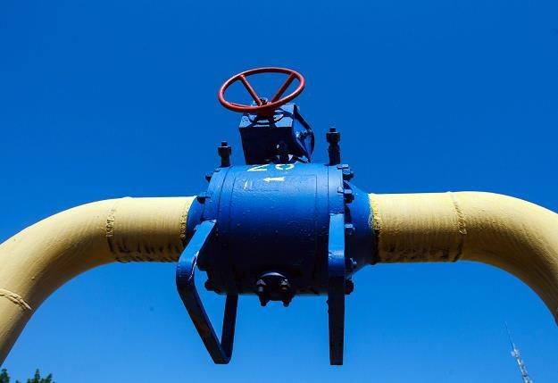 Zmniejszenie ilości przesyłanego gazu nastąpiło bez uprzedzenia /AFP