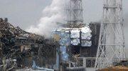 Zmutowane motyle po awarii w elektrowni Fukuszima