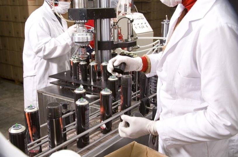 Znacznie zwiększyła się liczba cudzoziemców zatrudnianych w działach naukowo-badawczych oraz IT /123RF/PICSEL