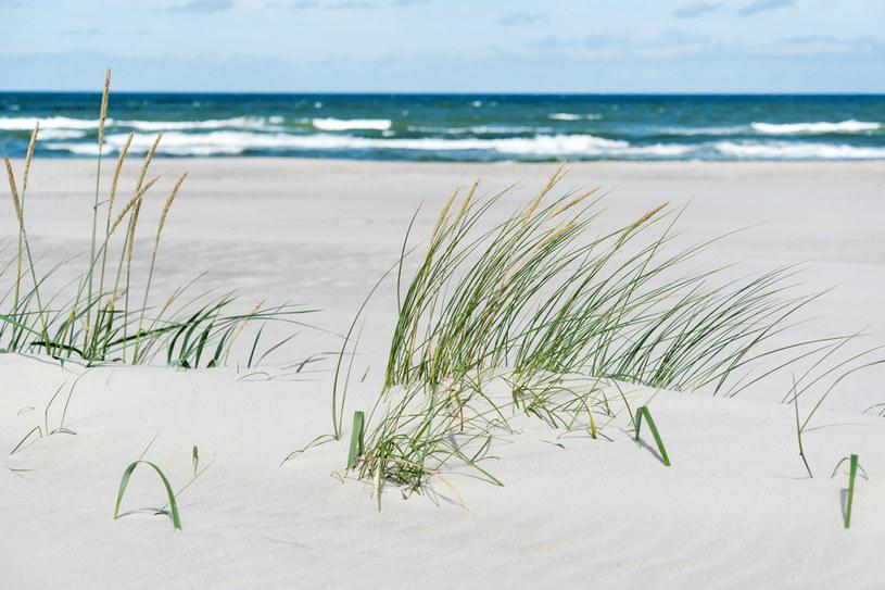 Znajdują się tu piekne plaże /123RF/PICSEL