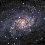 Znaleziono gwiazdę, która nie powinna istnieć