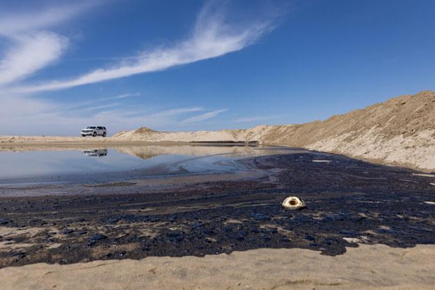 Znaleziono martwe ptaki i ryby. /CHRISTIAN MONTERROSA /PAP/EPA
